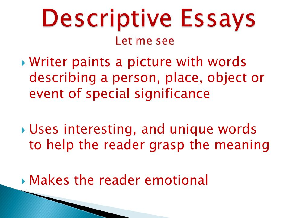 Descriptive essay about someone special