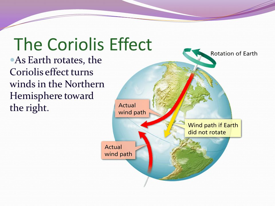 The Coriolis Effect As Earth rotates, the Coriolis effect turns winds in the Northern Hemisphere toward the right.