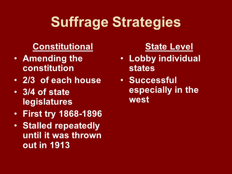 Suffrage Strategies Constitutional Amending the constitution