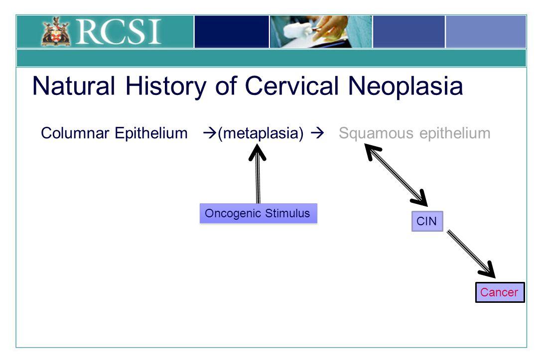 Natural History Of Cervical Cancer Ppt