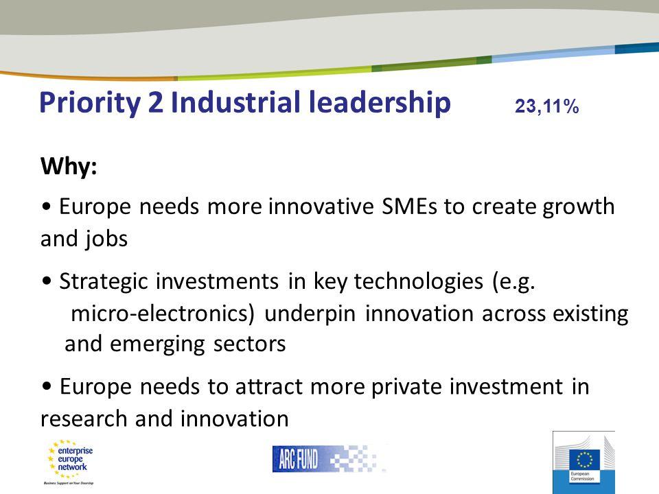 Industrial leadership 23,11%
