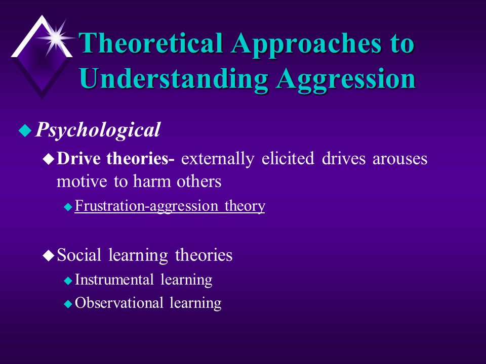 understanding society through the approach of social behaviorism