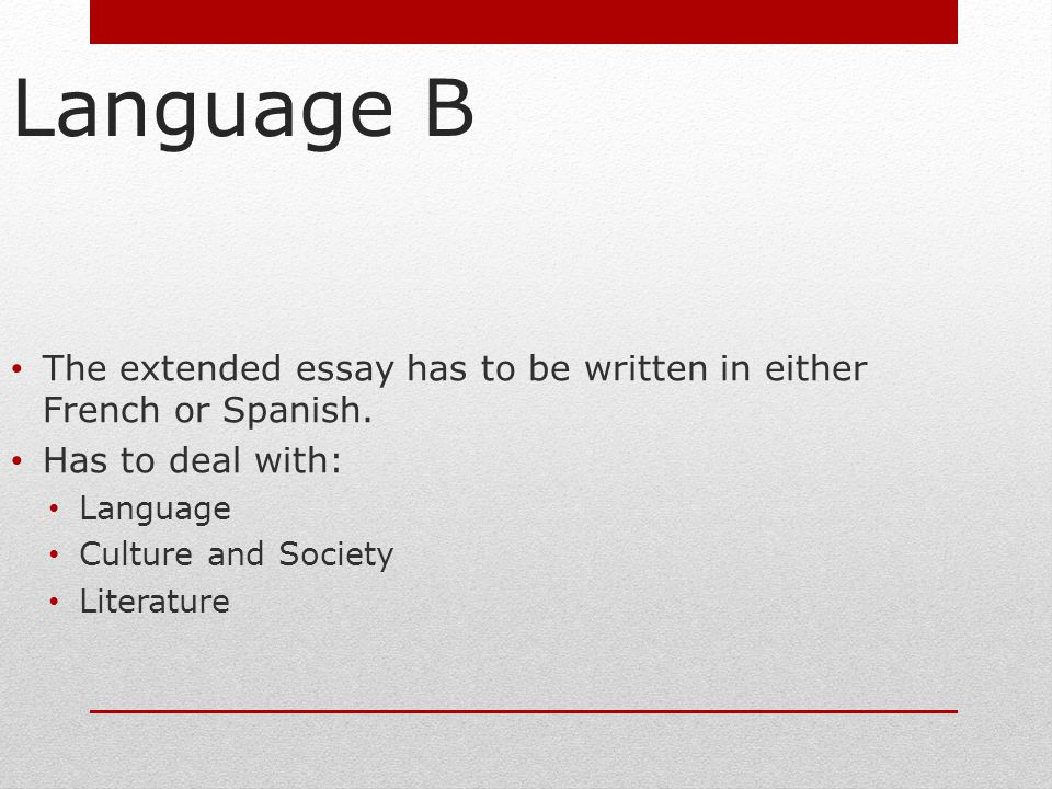 English language society essay