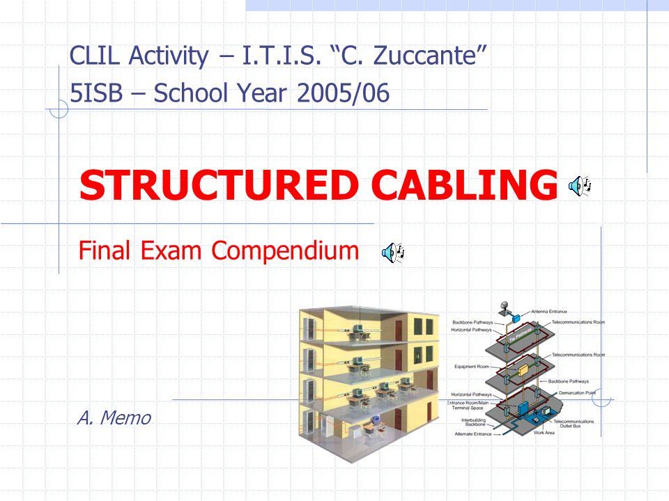 CLIL Activity – I.T.I.S. C. Zuccante 5ISB – School Year 2005/06