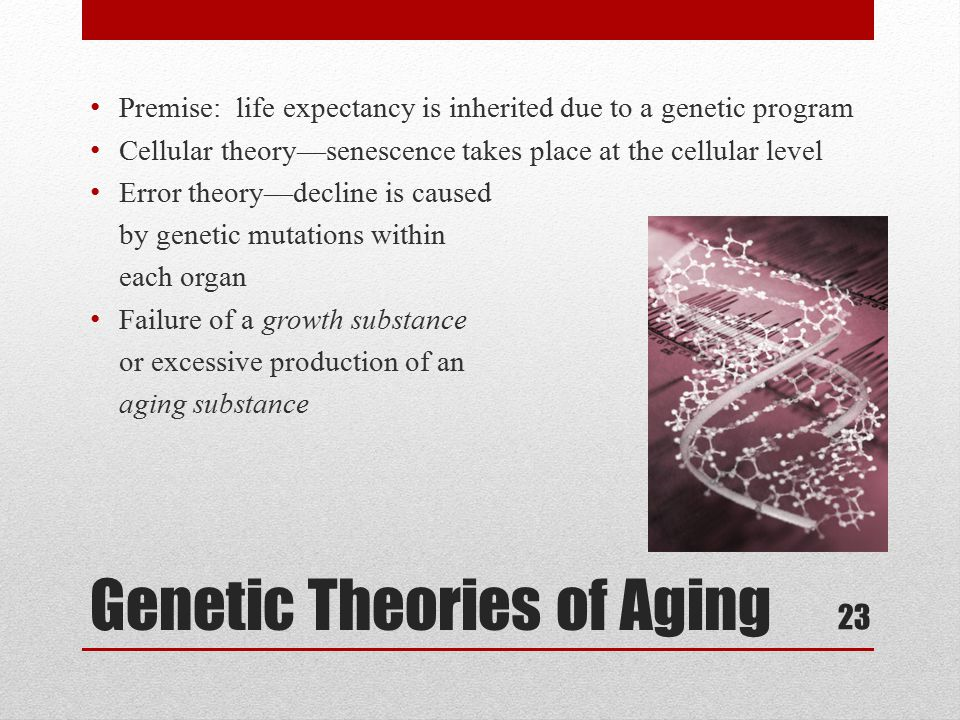 biological theories of aging Psychology definition of biological theory of aging: the many explanations that make up how we age.