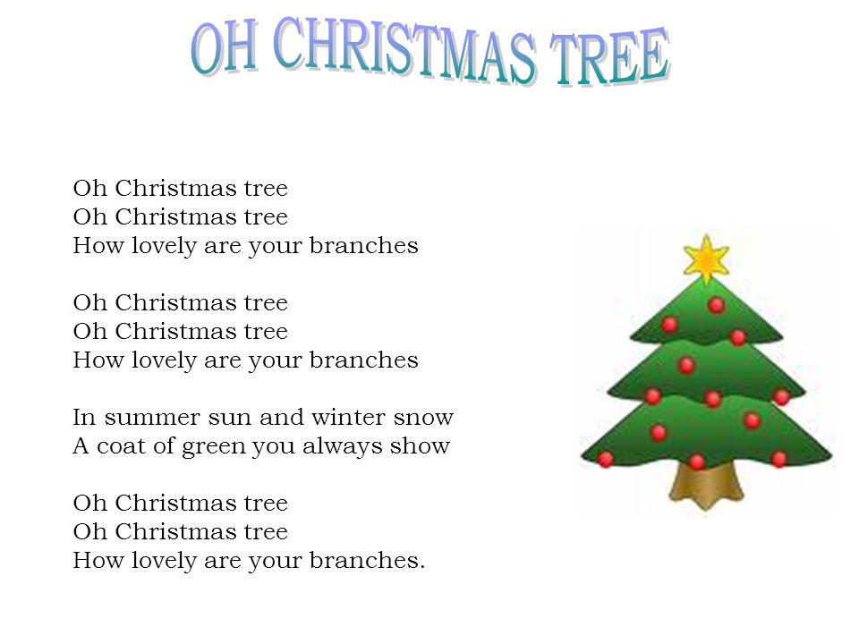 oh christmas tree oh christmas tree how lovely are your branches - Oh Christmas Tree How Lovely Are Your Branches Lyrics