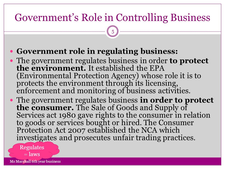 Role of Government in Business