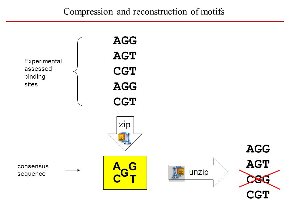 Compression and reconstruction of motifs