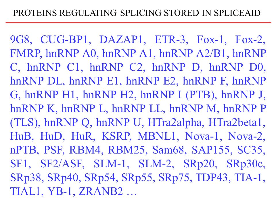 PROTEINS REGULATING SPLICING STORED IN SPLICEAID