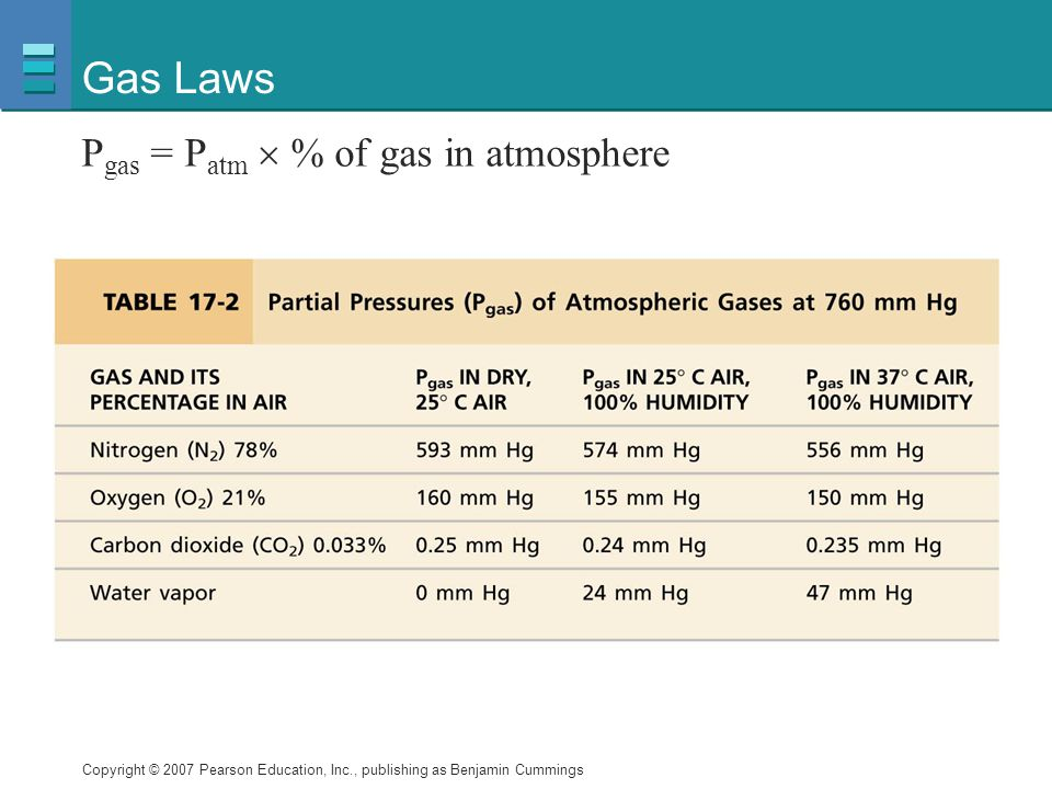 Gas Laws Pgas = Patm  % of gas in atmosphere