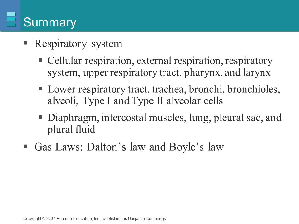 Summary Respiratory system Gas Laws: Dalton's law and Boyle's law