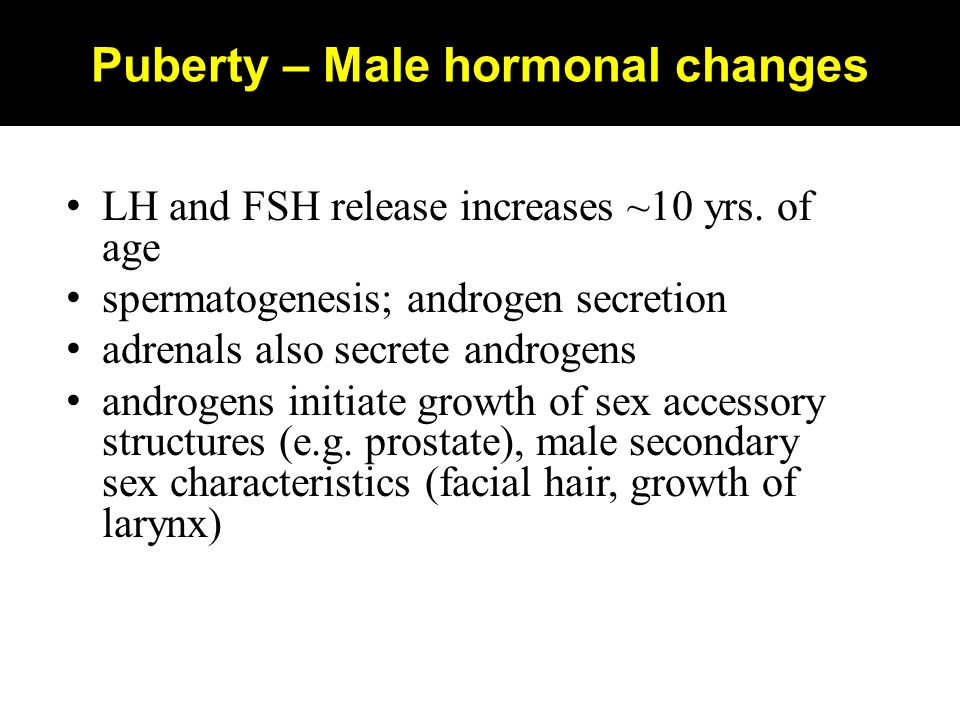 Puberty – Male hormonal changes