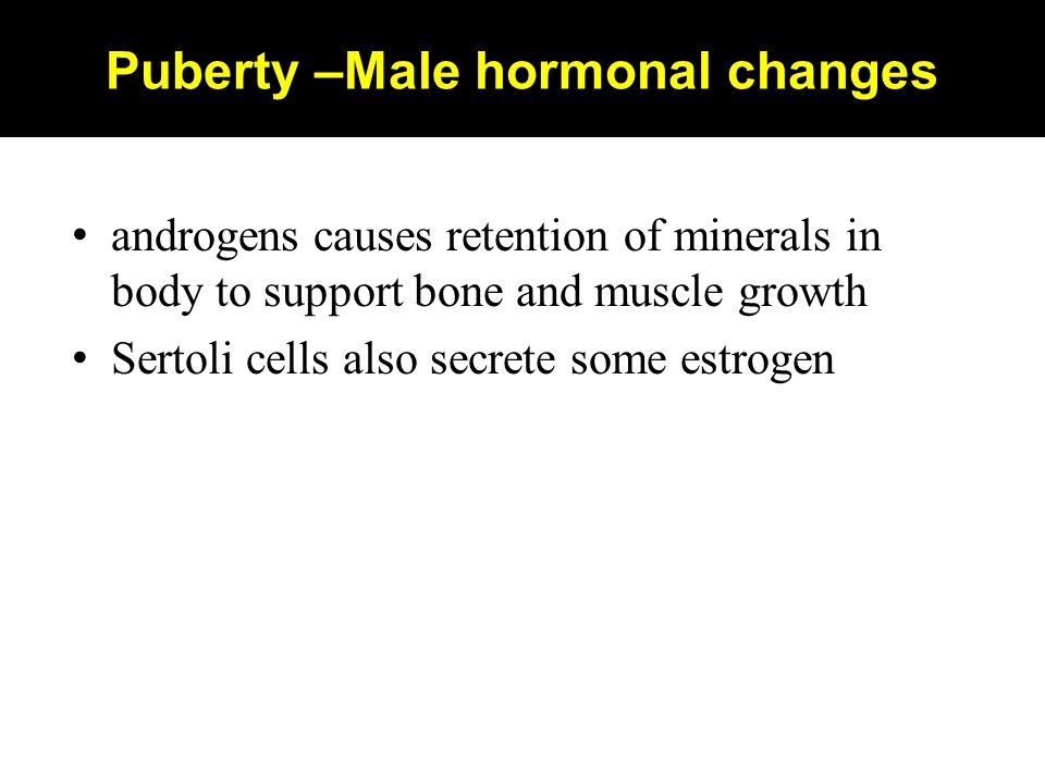 Puberty –Male hormonal changes