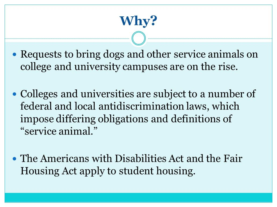 Rehabilitation Act Service Dogs