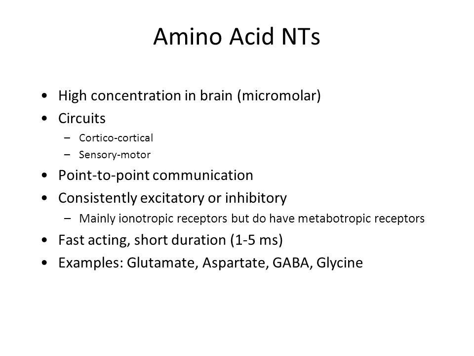 motor amino acid