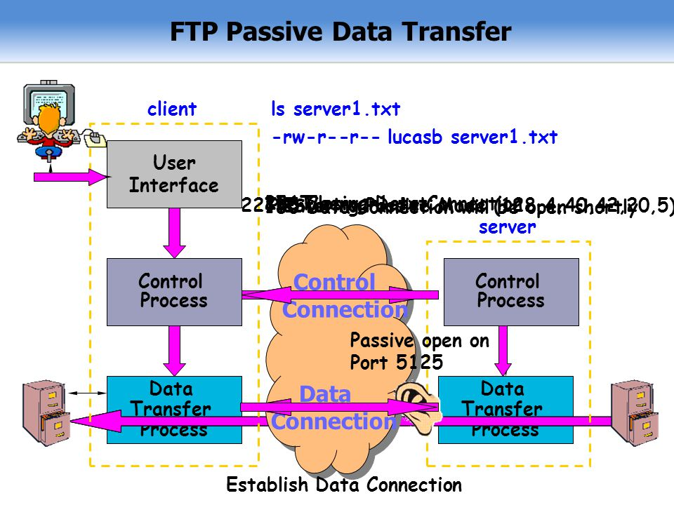 FTP Passive Data Transfer