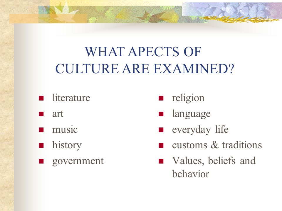 WHAT APECTS OF CULTURE ARE EXAMINED literature art music history