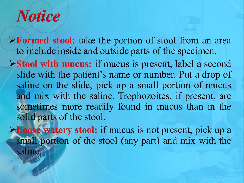 notice format