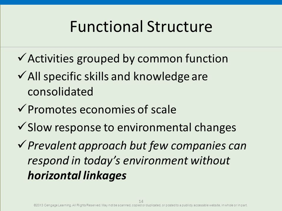 Functional Structure Activities grouped by common function