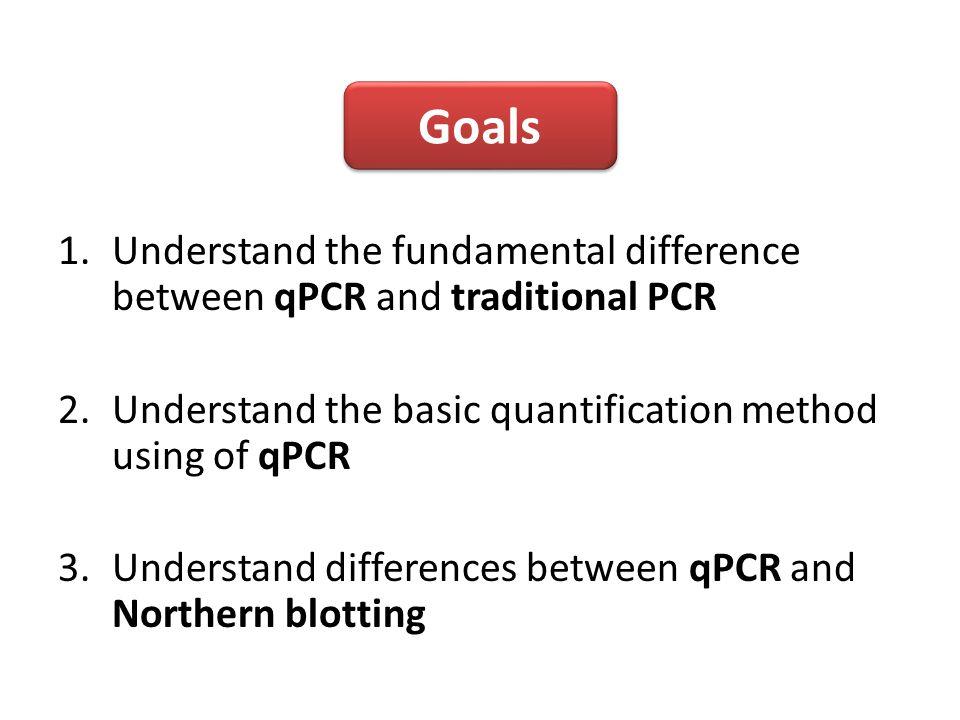 real time pcr quantitative pcr ppt