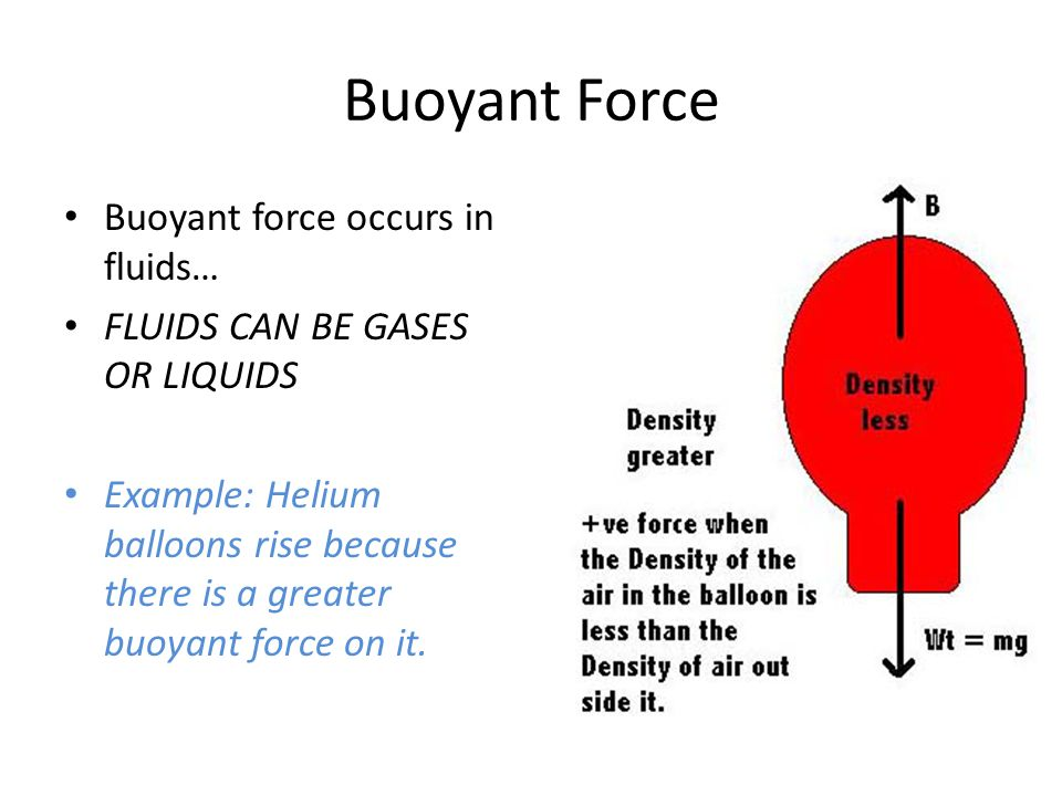 All Objects Experience A Buoyant Force When Immersed In A