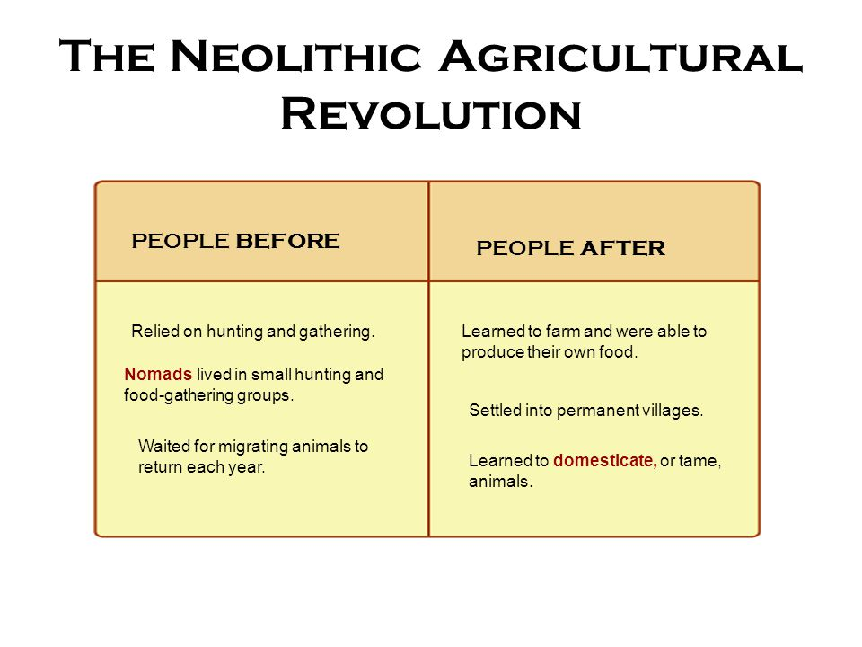 turning points for the neolithic revolution In conclusion, the neolithic revolution has impacted the development of civilization and is one of many turning points in all of mankind community, writing systems, population increase, religion, and more contributed to humans lives in many ways, from the beginning of the neolithic revolution.