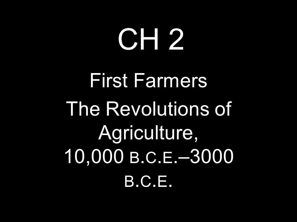 foundations c 8000 b c e 600 c e