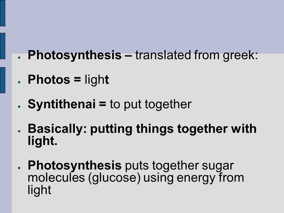 Photosynthesis – translated from greek: