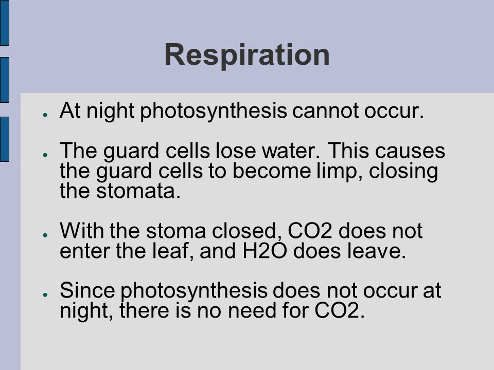 Respiration At night photosynthesis cannot occur.