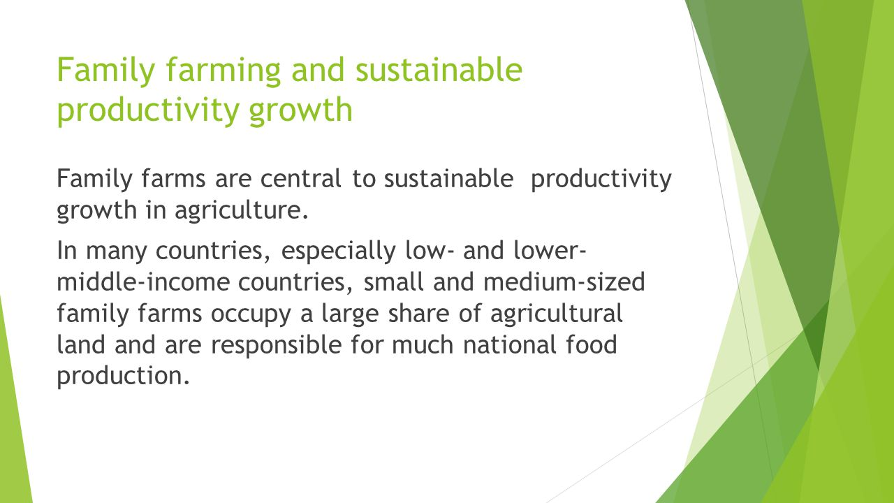 Family farming and sustainable productivity growth