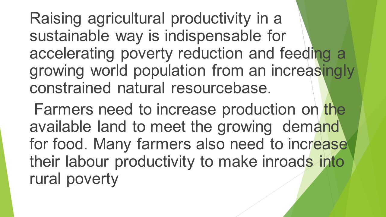 Raising agricultural productivity in a sustainable way is indispensable for accelerating poverty reduction and feeding a growing world population from an increasingly constrained natural resourcebase.