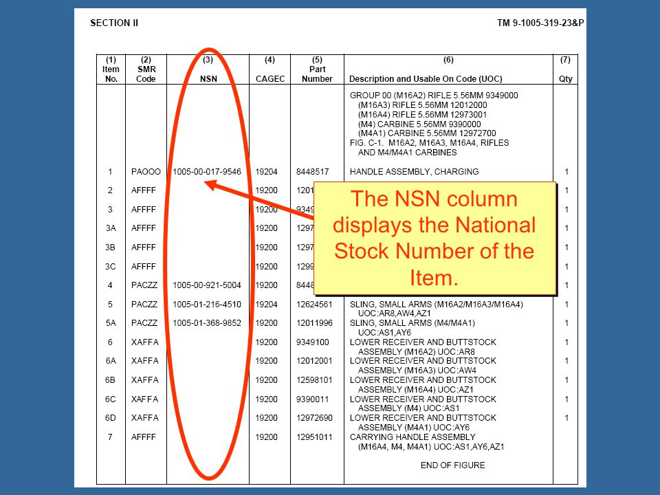 The NSN column displays the National Stock Number of the Item.