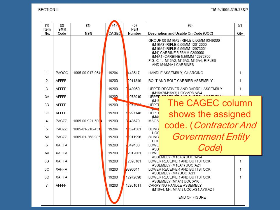 The CAGEC column shows the assigned code