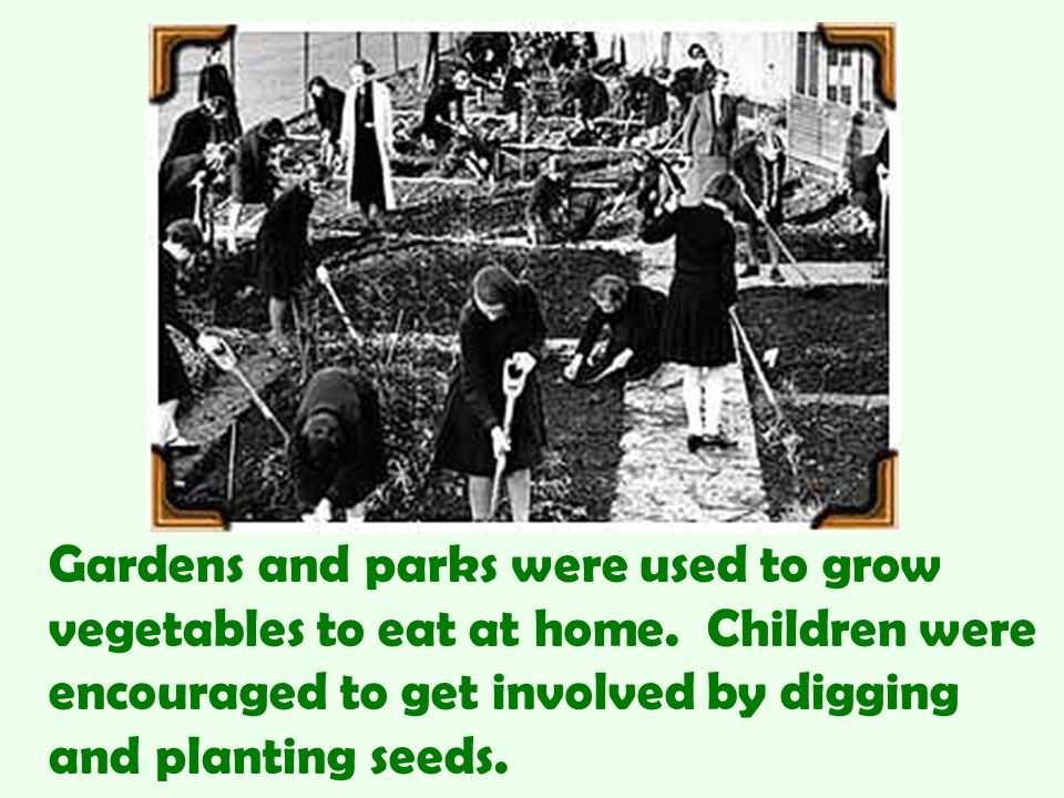Gardens and parks were used to grow vegetables to eat at home