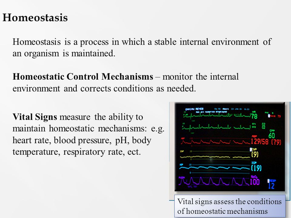 the concept of homeostasis essay Working in the health and social care sector will often  p5 explain the concept of homeostasis p6 follow guidelines to collect data for heart rate,.