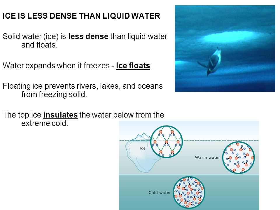 ICE IS LESS DENSE THAN LIQUID WATER