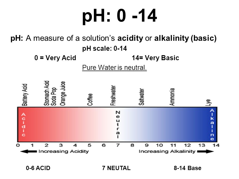 measuring the ph of common household Cabbage chemistry--finding acids and bases  some very common household solutions are acids,  what is the ph of the lemon or lime juice solution.