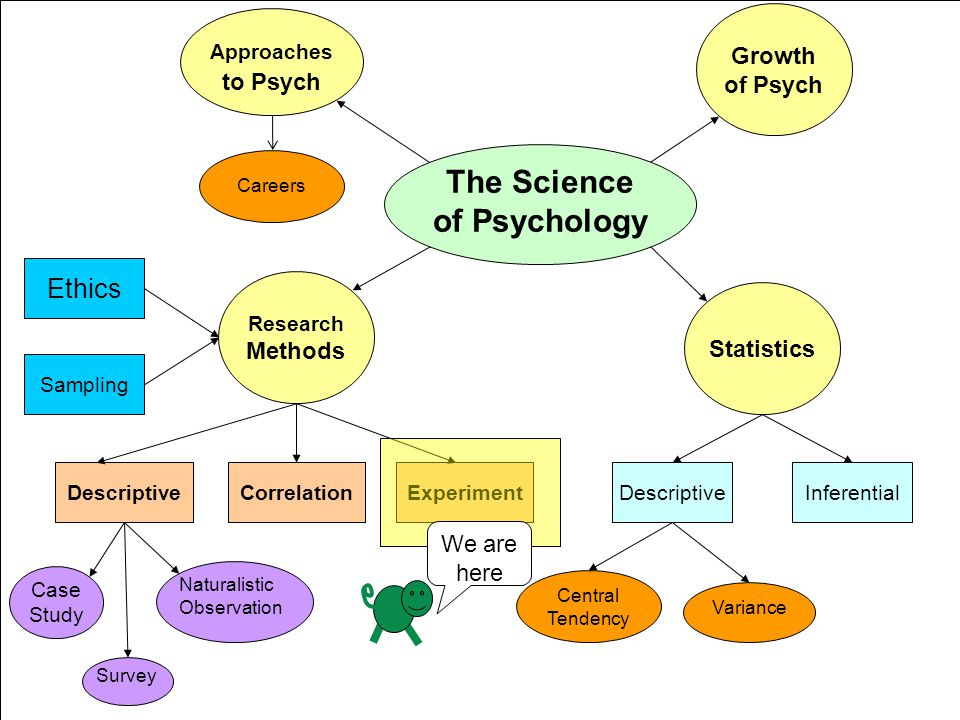 the correlation between psychology and science Home essays correlation between correlation between sociology and other social hence there is a close and intimate relationship between sociology and other social sciences economics, geography, history, political science, psychology, and sociology) according to what you believe is.