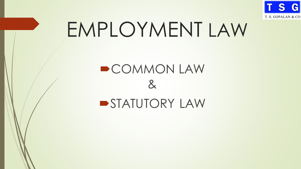 Law No (14) of the Year 2004 – Qatar Labor Law