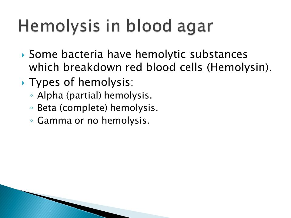Hemolysis in blood agar