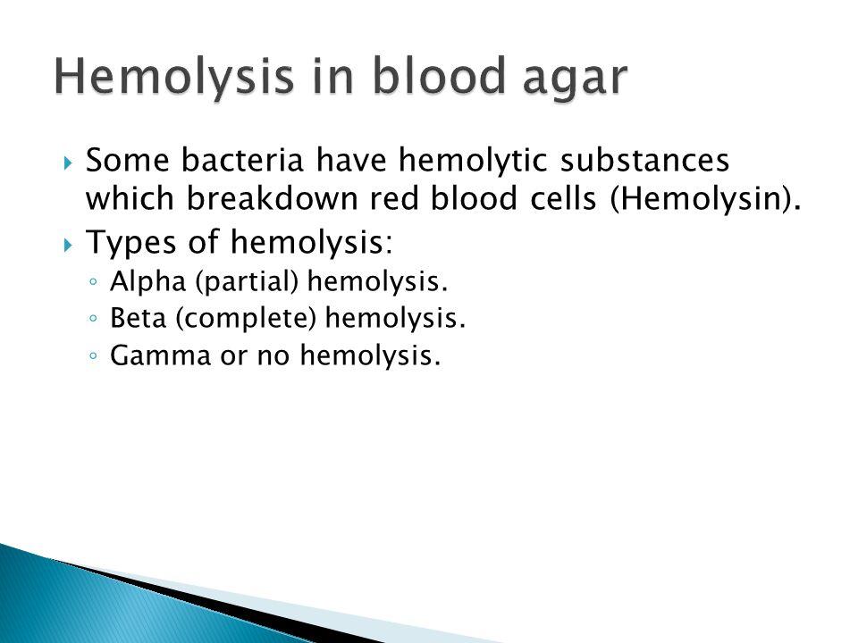 Hemolysis in blood agar