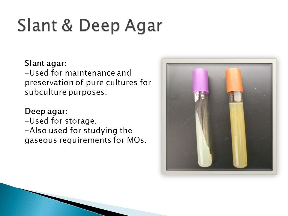 Slant & Deep Agar Slant agar: