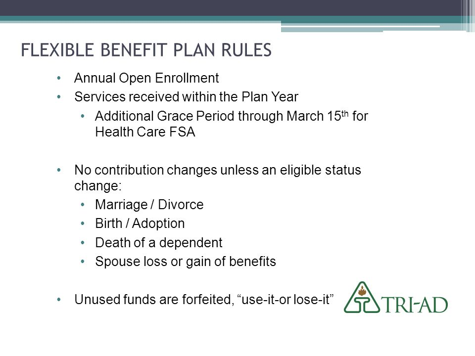 flexible benefits plan essay We will write a custom essay sample on benefits that are important to   organizations strategic plan for employee benefits considering today's dynamic  in the.
