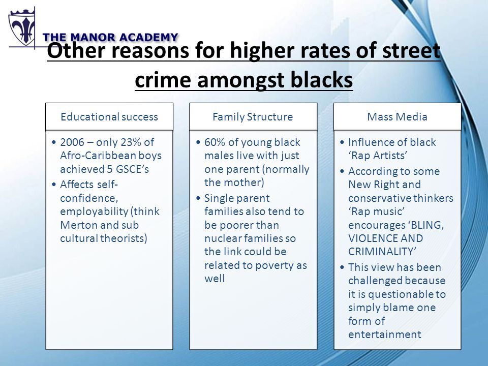 Unit 4 crime and deviance ppt video online download other reasons for higher rates of street crime amongst blacks publicscrutiny Gallery