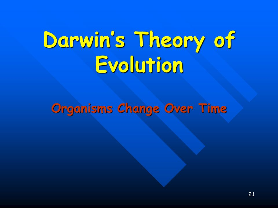 the impact of charles darwins theory of evolution Charles darwin is centrally important in the development of scientific and humanist ideas because he first made people aware of their place in the evolutionary process when the most powerful and intelligent form of life discovered how humanity had evolved the theory of evolution by natural selection was first put forward by darwin in on the.