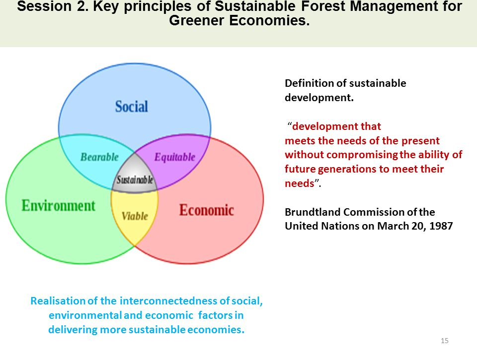 an analysis of the concept of sustainable development in 1987 The term, 'sustainable development' was defined in 1987 by the world  the  social dimention of sustainability: towards some definitions and analysis 25.