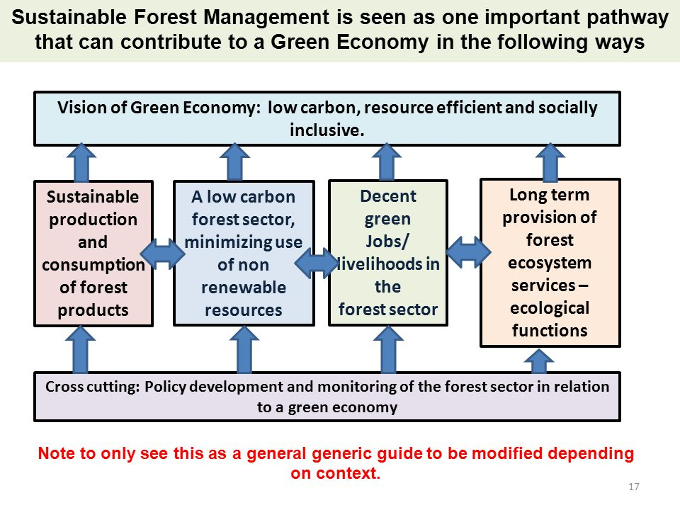 Sustainable Forest Management ~ Welcome to this national training workshop on ppt video