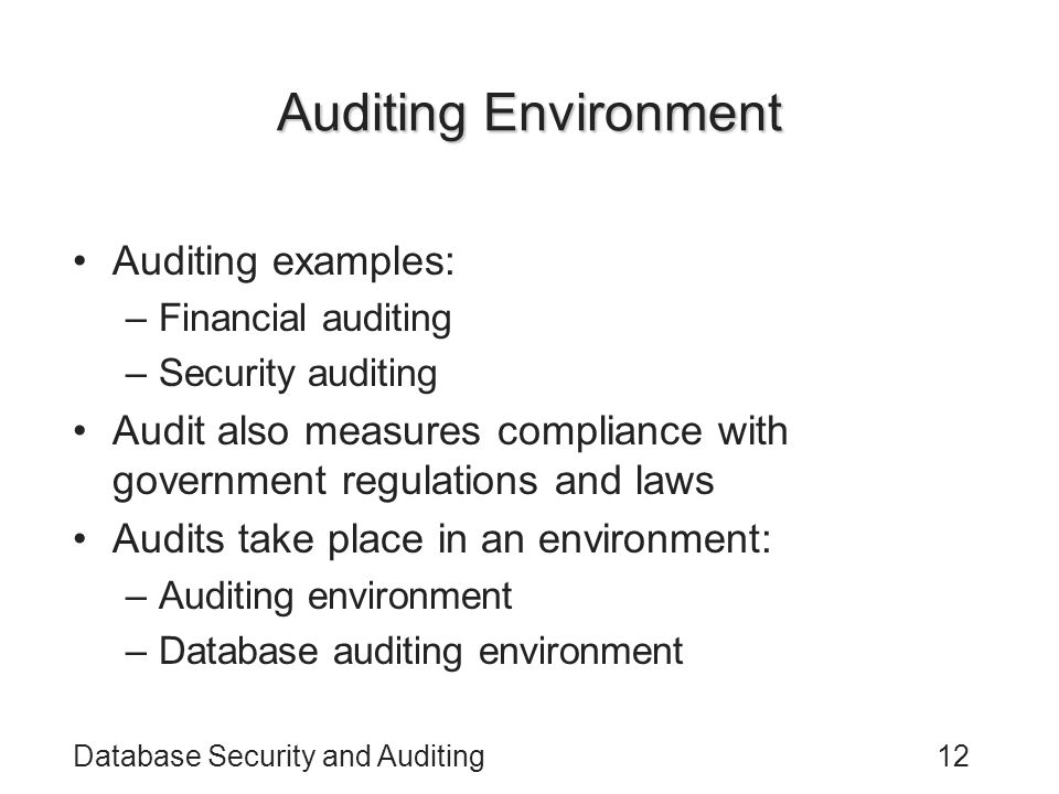 Auditing Environment Auditing examples: