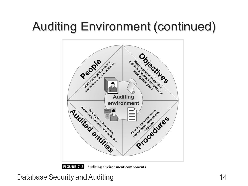 Auditing Environment (continued)