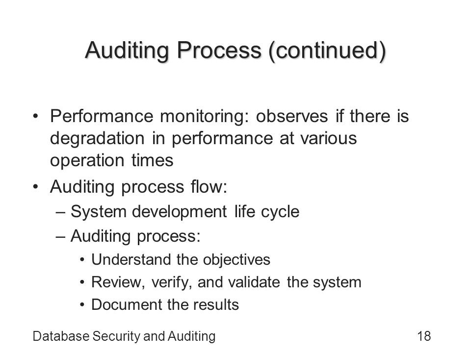 Auditing Process (continued)
